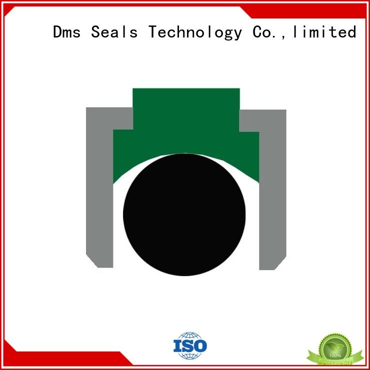 Quality DMS Seal Manufacturer Brand pneumatic piston seals hydraulic