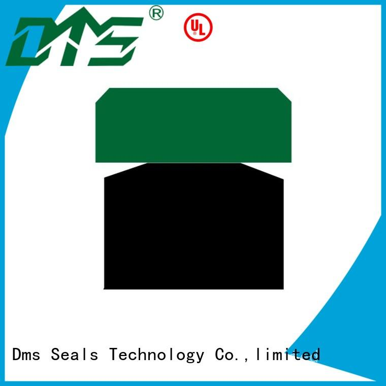 DMS Seal Manufacturer piston seals glyd ring for sale