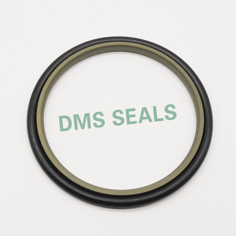 DMS Seal Manufacturer Custom forklift hydraulic cylinder seals with nbr or pu for sale-DMS Seal Manu