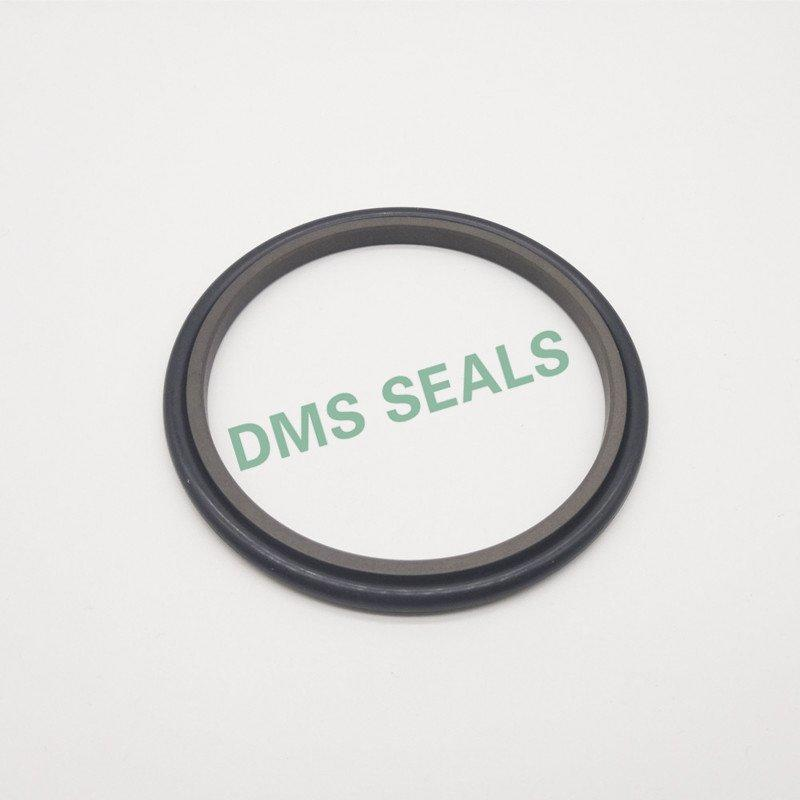 hydraulic rod seals ptfe oring Bulk Buy hydraulic DMS Seal Manufacturer