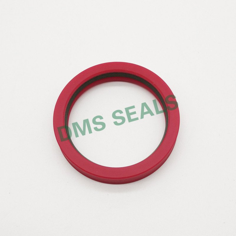DMS Seal Manufacturer-hydraulic rod seals online | Rod Seals | DMS Seal Manufacturer-1
