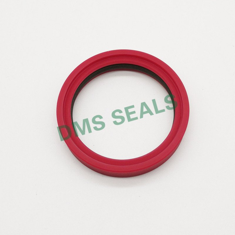 DMS Seal Manufacturer-O Ring Manufacturers | Tdi - Ptfe Hydraulic Rod Seal With Nbr Or Pu - Dms-2
