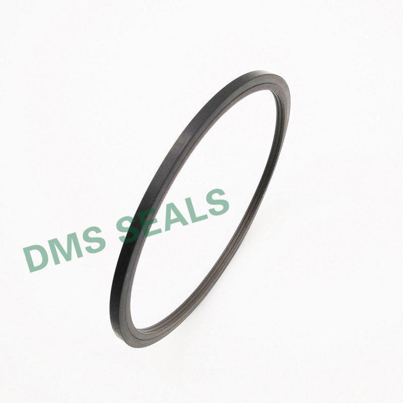 oring rod nbrfkm rod seals DMS Seal Manufacturer