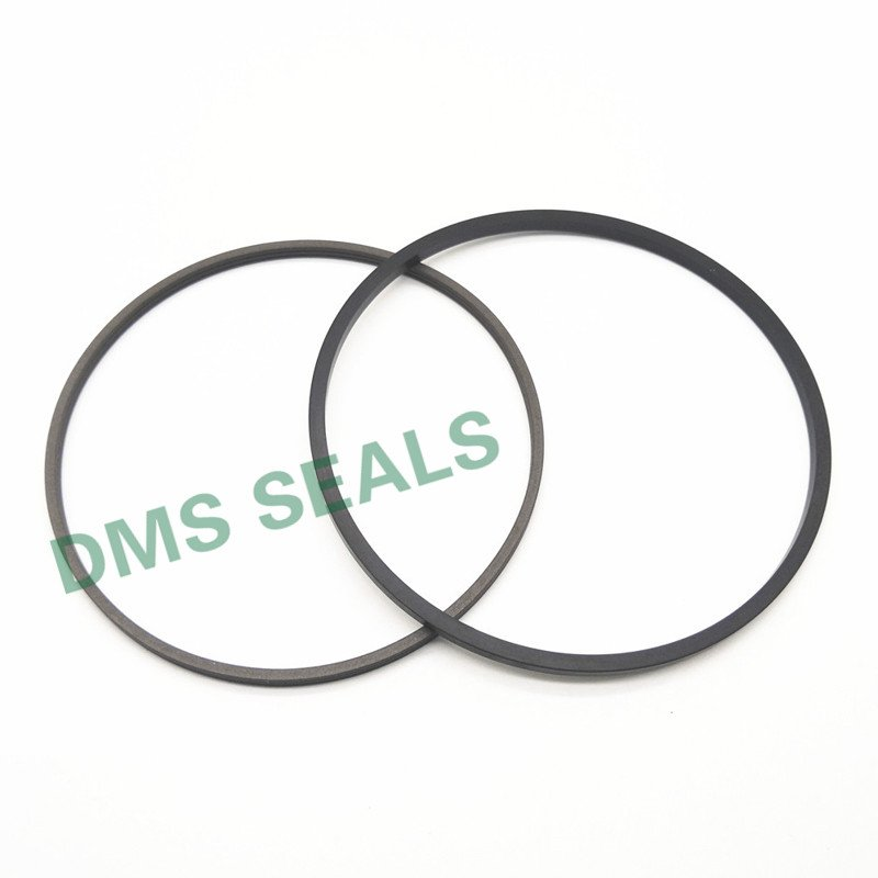 DMS Seal Manufacturer SPN - PTFE Hydraulic Rod Seal with NBR/FKM O-Ring Rod Seals image9