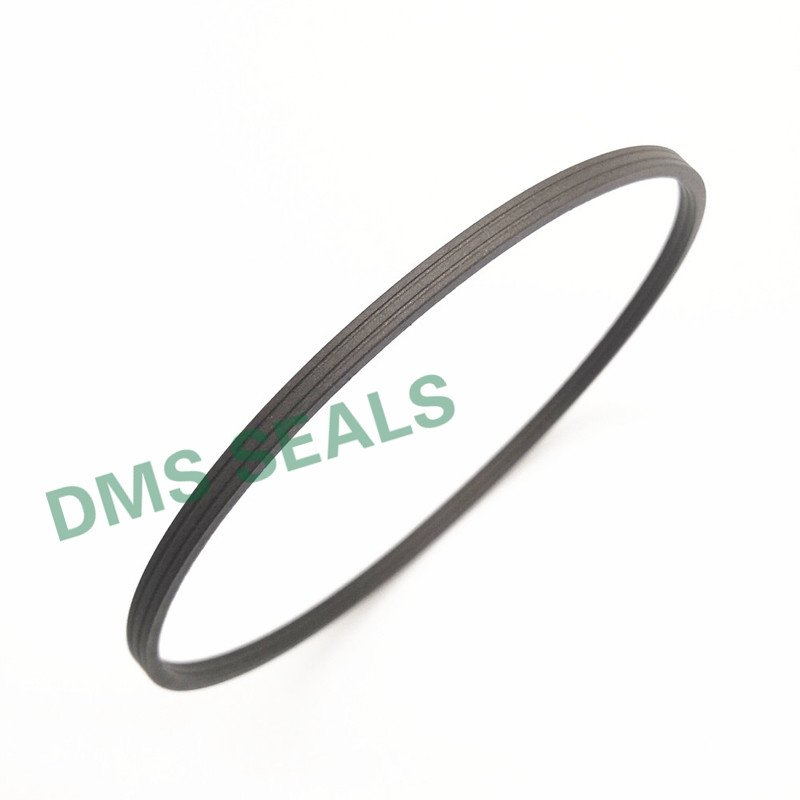 DMS Seal Manufacturer-Manufacturer Of O-ring Seal Spn - Ptfe Hydraulic Rod Seal With Nbrfkm O-ring