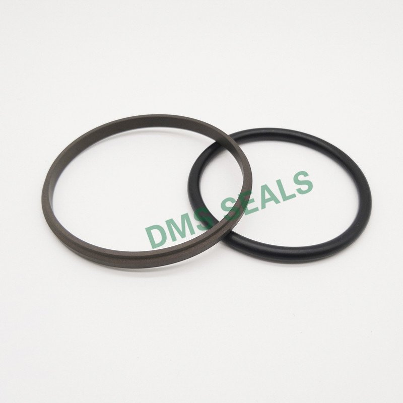 DMS Seal Manufacturer-GSD - PTFE Hydraulic Piston Seal with NBRFKM O-Ring-3