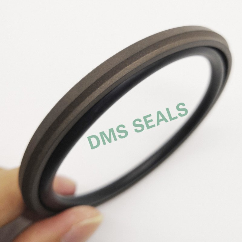 DMS Seal Manufacturer-Gsd - Ptfe Hydraulic Piston Seal With Nbrfkm O-ring | Piston Seals Company-1