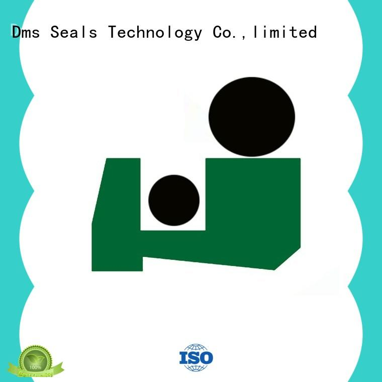 DMS Seal Manufacturer wiper seals with different characteristics for injection molding machines