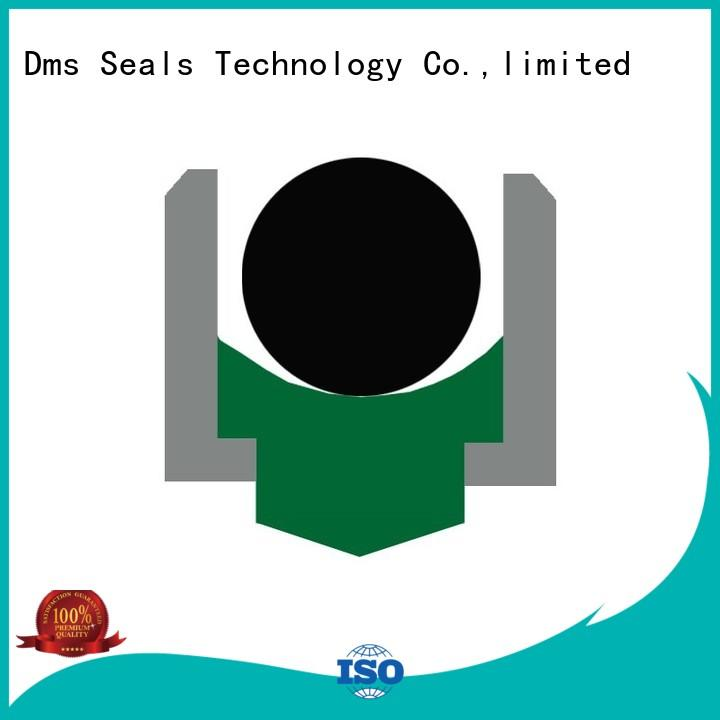Custom hydraulic rotary seals ptfe DMS Seal Manufacturer