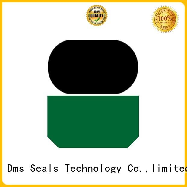 seal nbrfkm ptfe rod seals rod DMS Seal Manufacturer