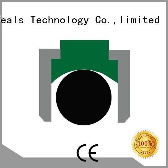 piston ptfe seal hydraulic piston seals DMS Seal Manufacturer