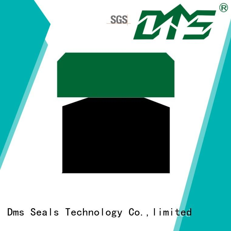 DMS Seal Manufacturer hydraulic piston seals sizes glyd ring for light and medium hydraulic systems