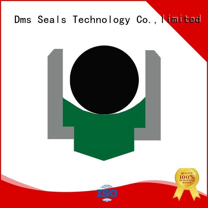 DMS Seal Manufacturer Brand hydraulic rotary ptfe rotary shaft seals nbrfkm