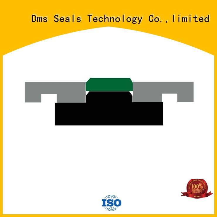 DMS Seal Manufacturer Top bucket cylinder seal kit glyd ring for sale
