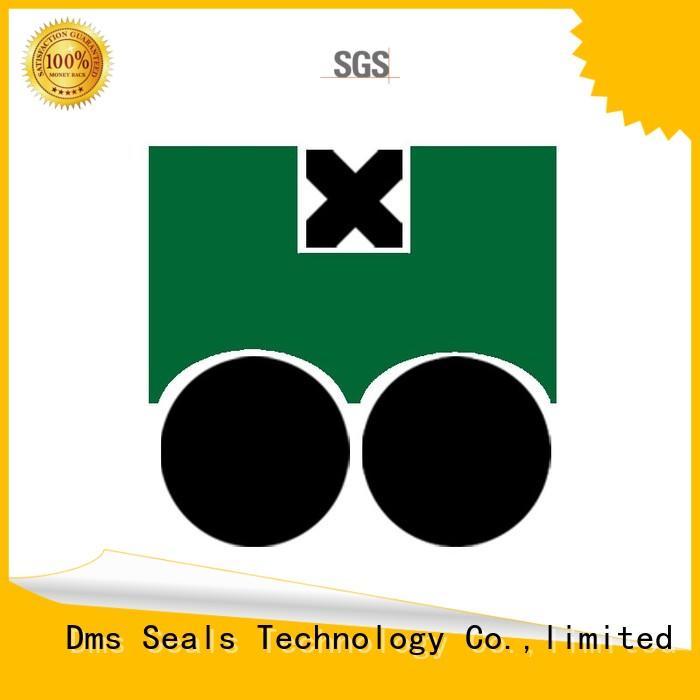 ptfe piston seals piston seal DMS Seal Manufacturer company