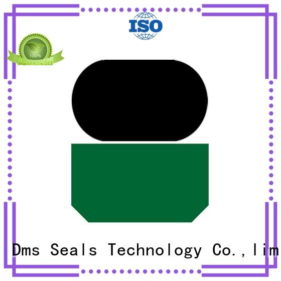 oring rod ptfe hydraulic rod seals DMS Seal Manufacturer
