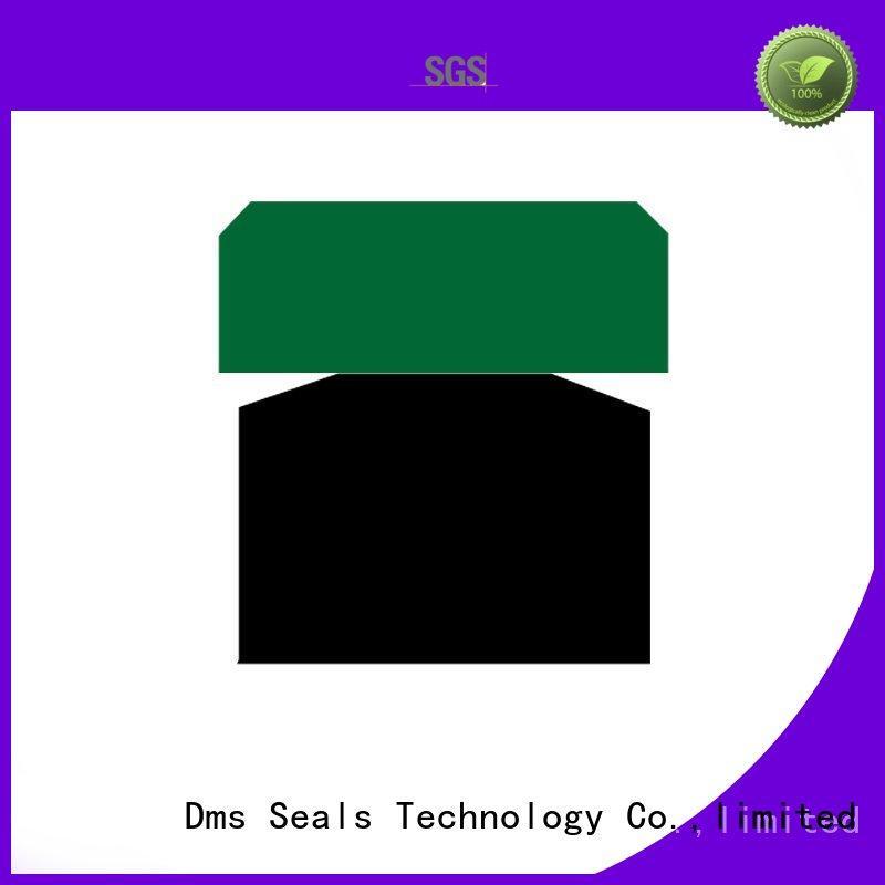 DMS Seal Manufacturer Brand seal ptfe piston seals oring factory