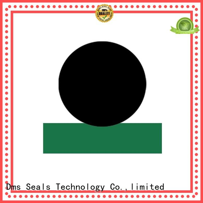 Quality DMS Seal Manufacturer Brand hydraulic rod seals oring rod
