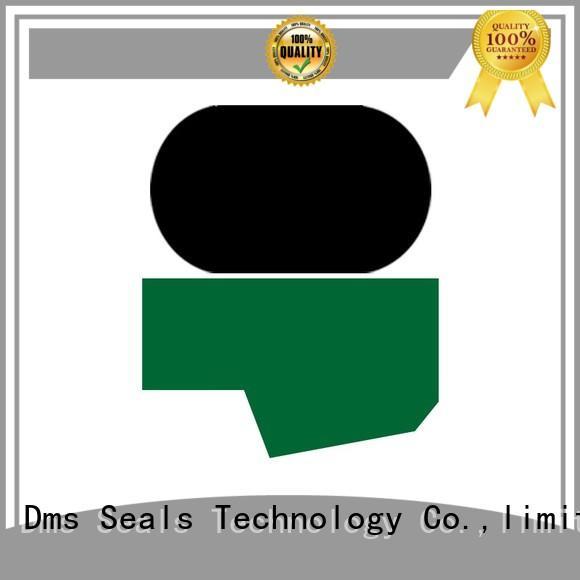 Custom oring hydraulic rod seals DMS Seal Manufacturer seal