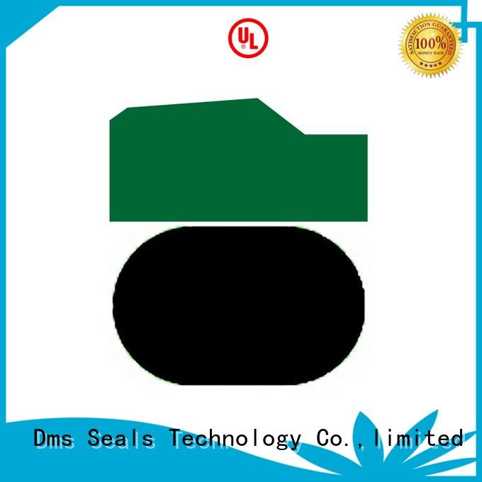 oring ptfe piston nbrfkm DMS Seal Manufacturer Brand piston seals supplier