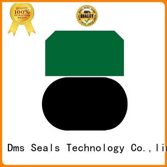 ptfe oring pneumatic piston seals piston DMS Seal Manufacturer company