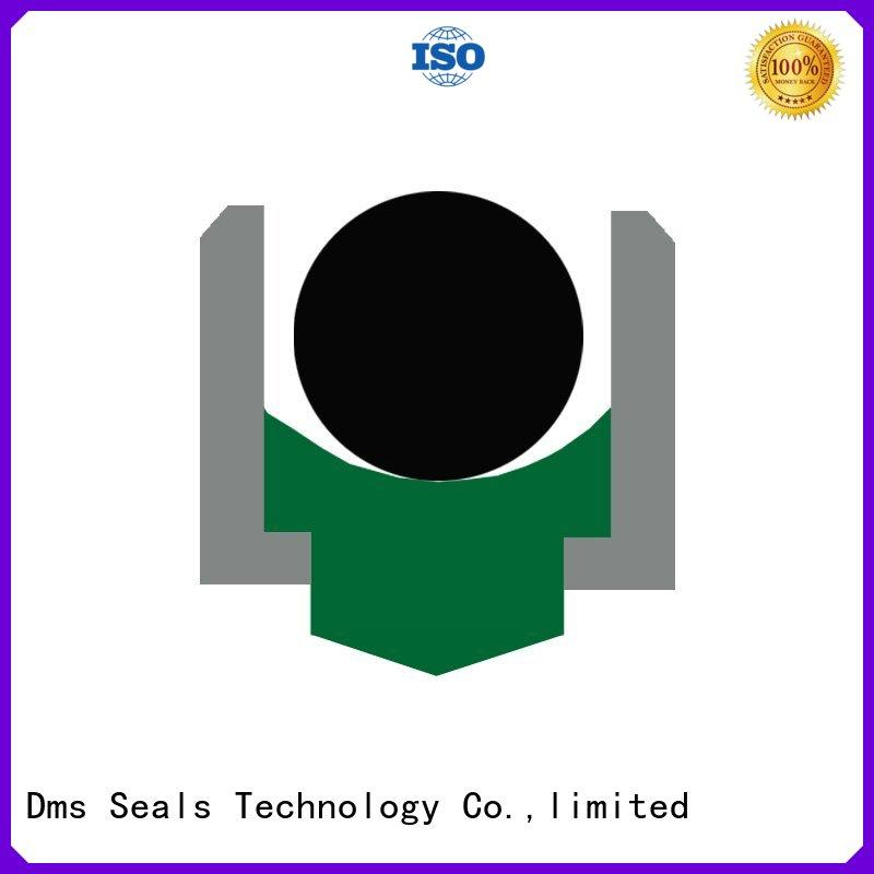 seal hydraulic rotary shaft seals DMS Seal Manufacturer Brand