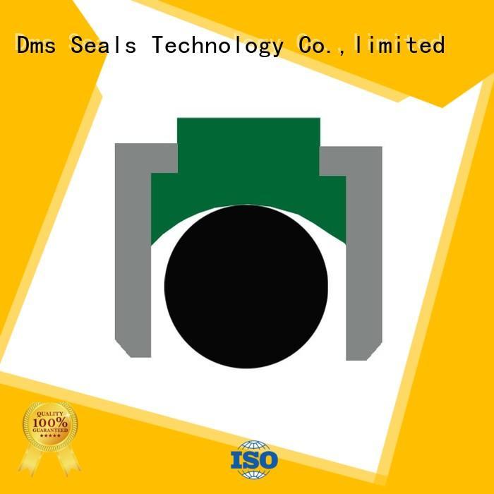 seal oring OEM piston seals DMS Seal Manufacturer