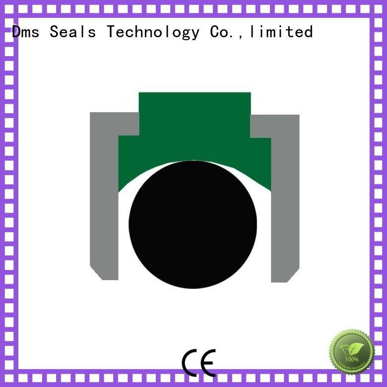 seal Custom hydraulic nbrfkm piston seals DMS Seal Manufacturer ptfe