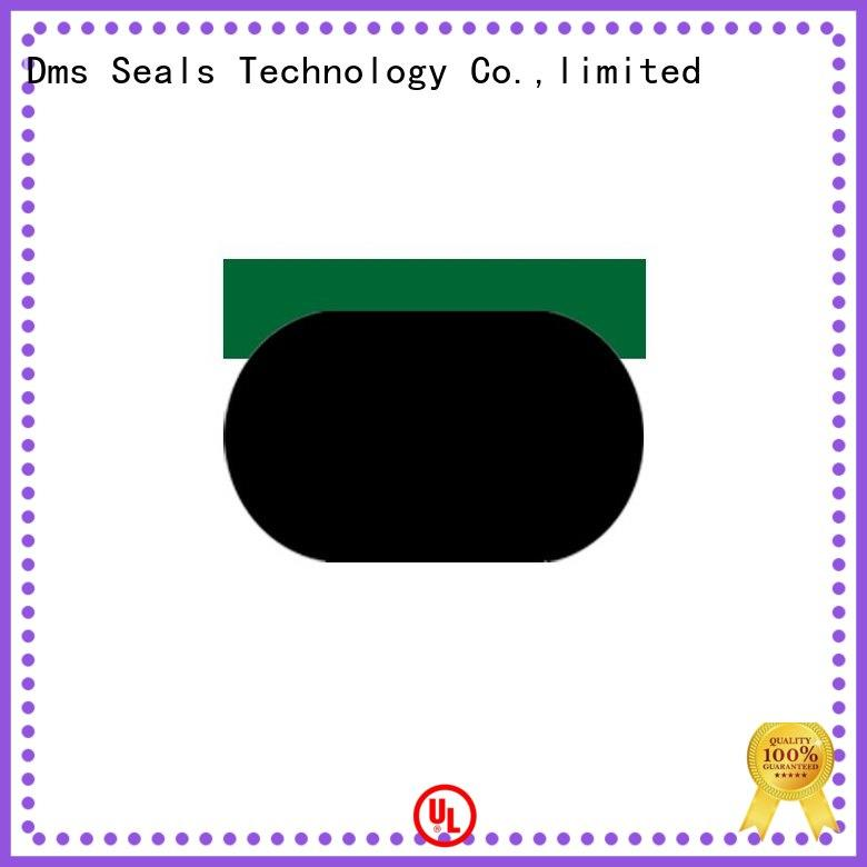 DMS Seal Manufacturer oil seal hydraulic with nbr or fkm o ring for sale