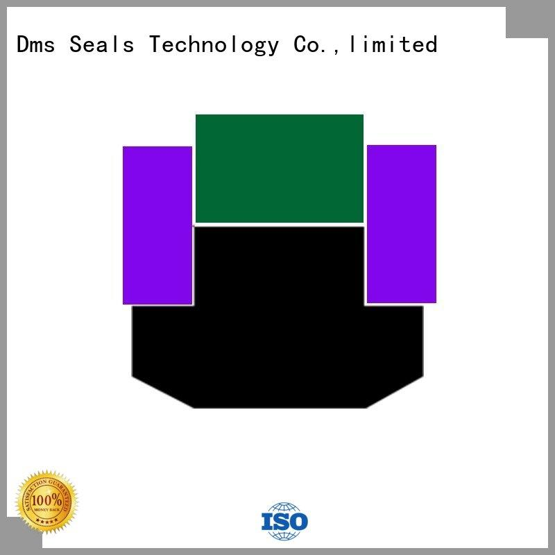 DMS Seal Manufacturer Brand hydraulic piston piston seals manufacture