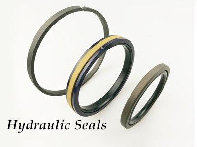 DMS Seal Manufacturer