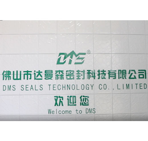 DMS Seal Manufacturer-video of  DMS Seal Manufacturers   Production Environment