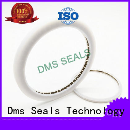 oil seal spring manufacturers for reciprocating piston rod or piston single acting seal