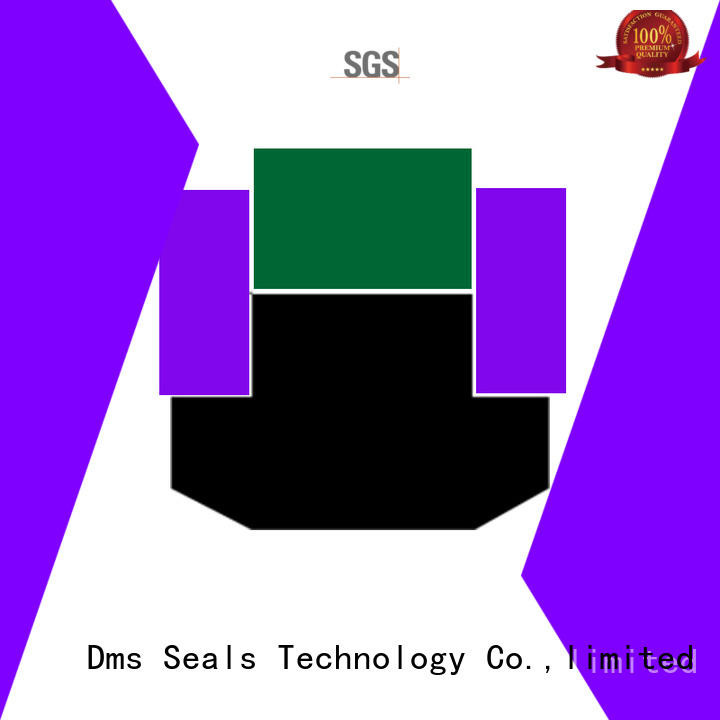 spg piston seals spgc for sale DMS Seal Manufacturer