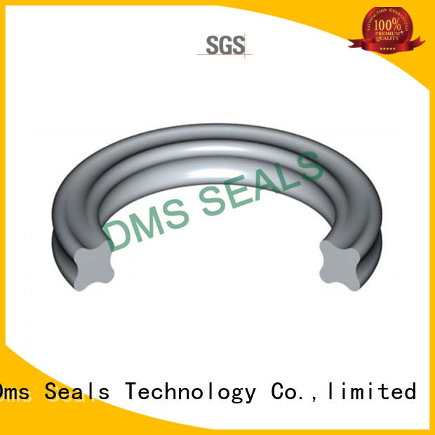 DMS Seal Manufacturer fep o ring seal kit custom in highly aggressive chemical processing