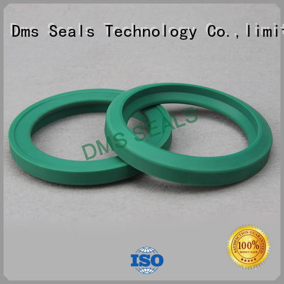 DMS Seal Manufacturer hydraulic oil seal supplier for piston and hydraulic cylinder