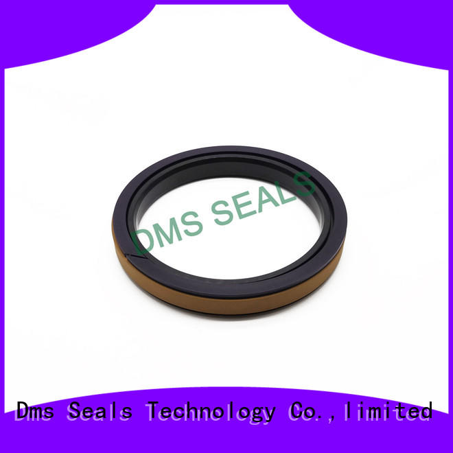 DMS Seal Manufacturer Best hydraulic seal kits suppliers glyd ring for light and medium hydraulic systems