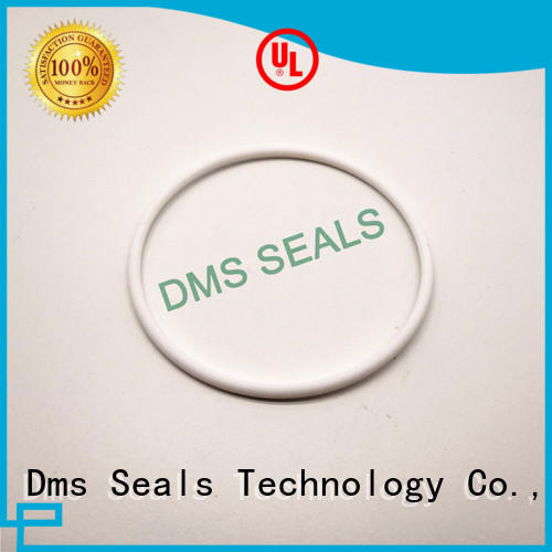 Quality DMS Seal Manufacturer Brand oil seal ring hydraulic
