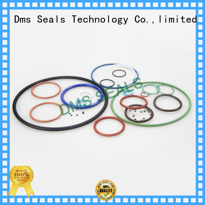 DMS Seal Manufacturer giant o ring for sale