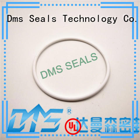 o ring seal manufacturer in highly aggressive chemical processing DMS Seal Manufacturer