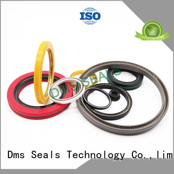 DMS Seal Manufacturer conical spring mechanical seal Supply for reciprocating piston rod or piston single acting seal