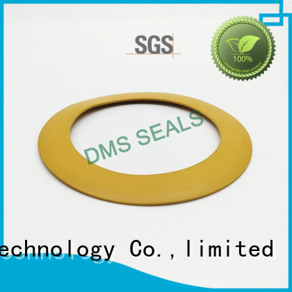 DMS Seal Manufacturer plastic soft rubber gasket torque for liquefied gas