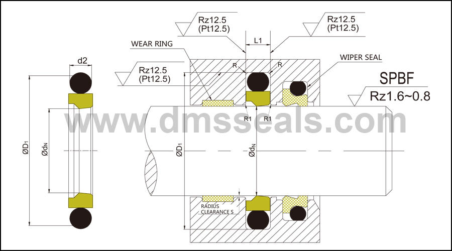 DMS Seal Manufacturer compact piston o ring-1