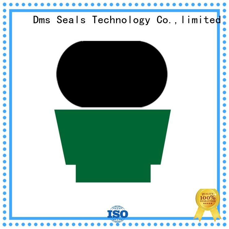 Quality DMS Seal Manufacturer Brand hydraulic rod seals rod nbrfkm
