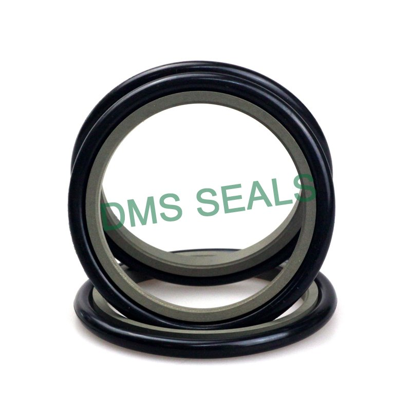 DMS Seal Manufacturer GZT - PTFE Hydraulic Rod Seal with NBR/FKM O-Ring Rod Seals image1