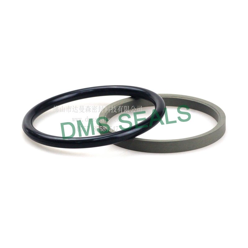 hydraulic rod seals for sale DMS Seal Manufacturer-2