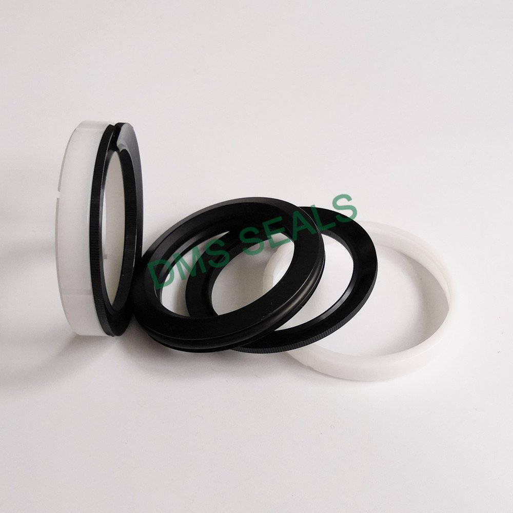 DMS Seal Manufacturer-Find O-ring Seal Hydraulic Piston Seals From Dms Seal Manufacturer-2