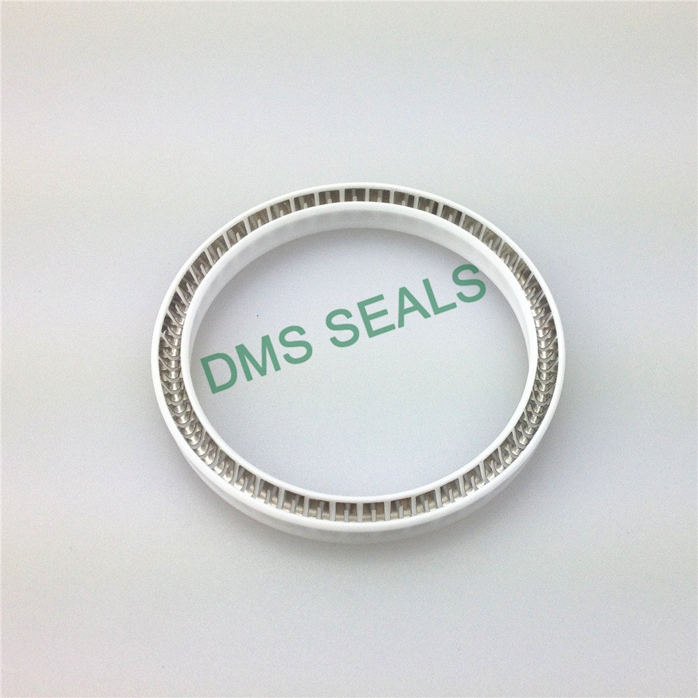 spring energized seals solutions for reciprocating piston rod or piston single acting seal DMS Seal Manufacturer-2