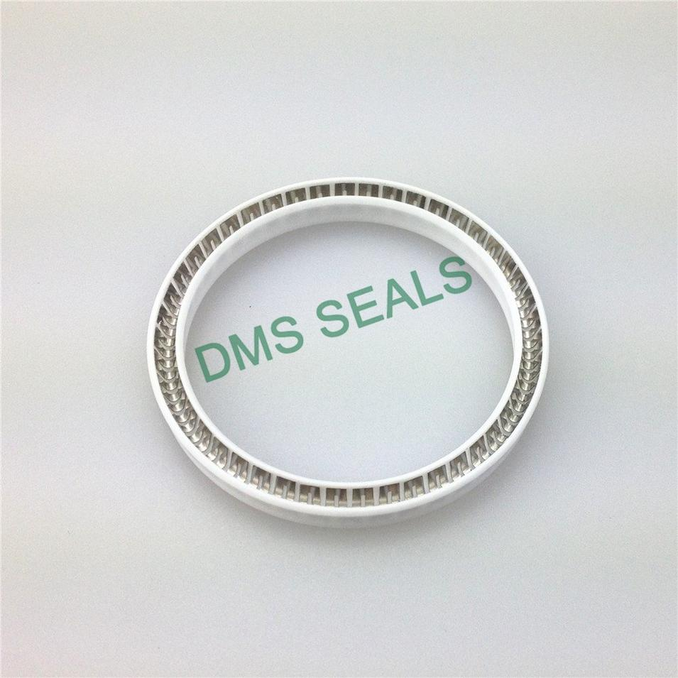 Virgin PTFE FDA Food and Medicine Industry Spring Energized Seal Mechanical Seal Manufacturers