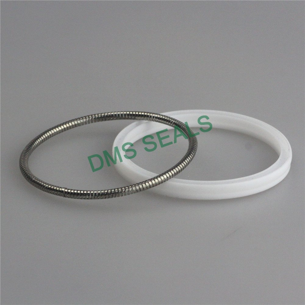 DMS Seal Manufacturer-Professional Spring Seals Oil Seal Spring Manufacture